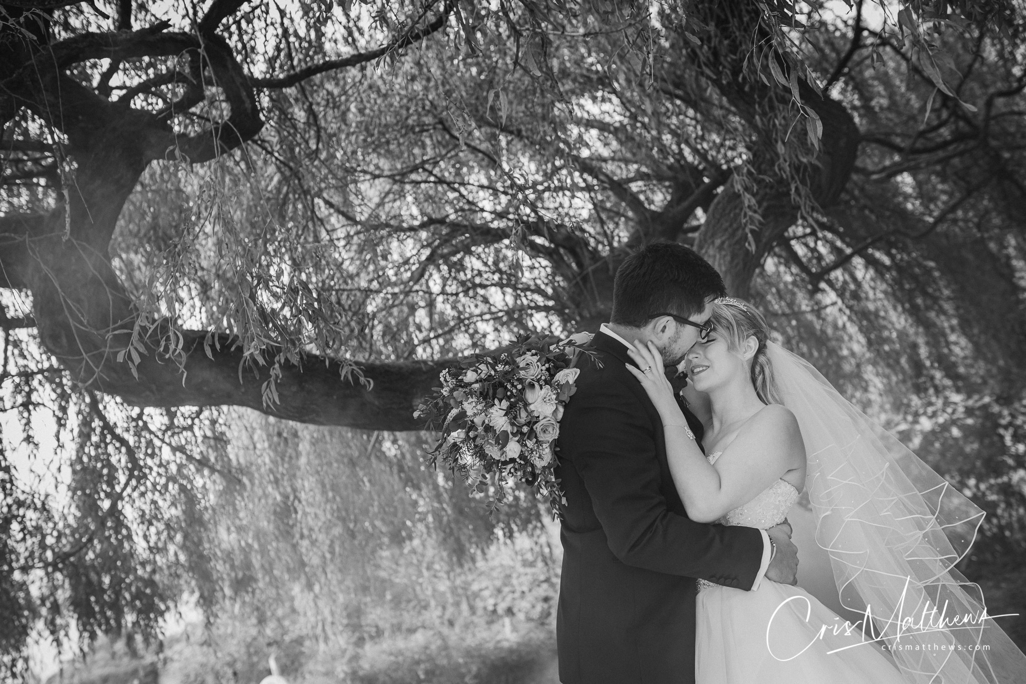 Willow Tree at Hawkstone Hall Wedding Photography